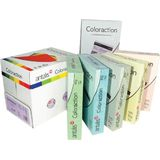 Carton color Coloraction, A4, 160 g, 250 coli/top, galben pal - desert - Pret/top