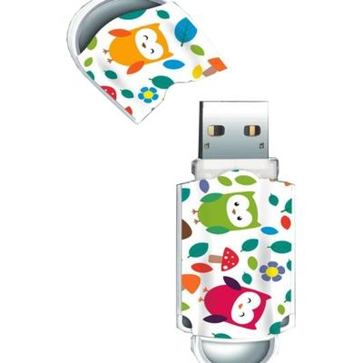 Memorie USB Integral Xpression Birds 16GB