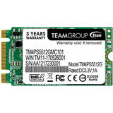 SSD Team Group M.2 128GB Team Lite Type 2242